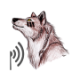 helper_chirp_wolf.png